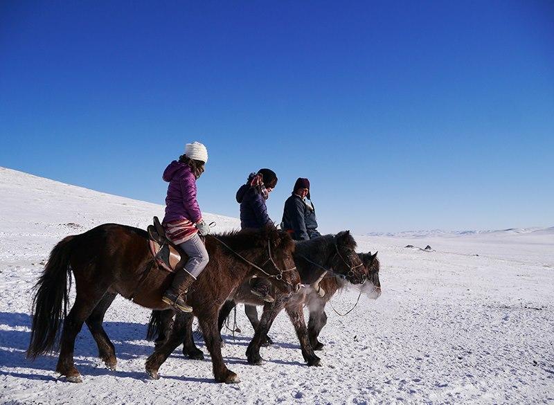 冬毛を生やした馬に跨り、雪原を往く