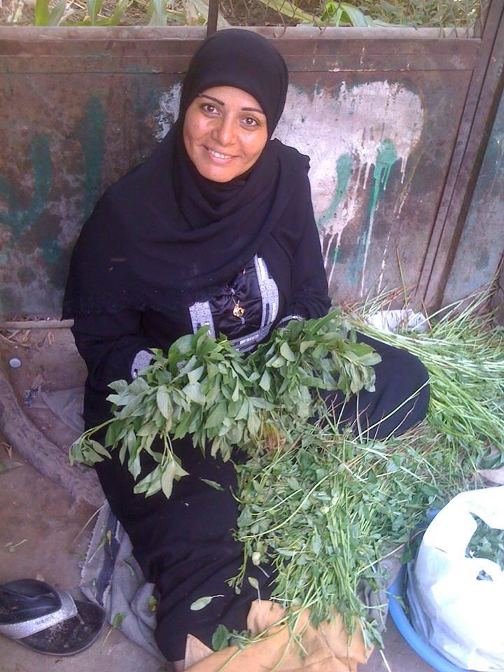 エジプトの代表的な野菜『モロヘイヤ』