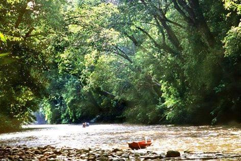 「水曜どうでしょう」のロケ地 マレーシア タマンネガラ国立公園
