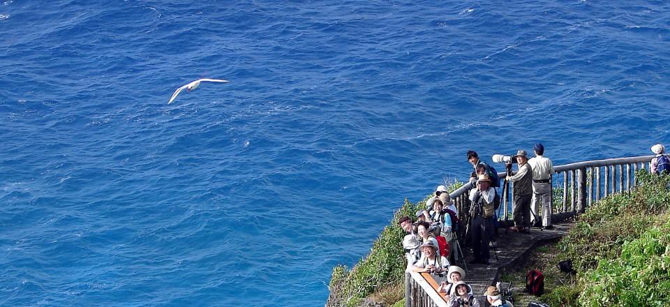近くて遠い南の島 ロタ