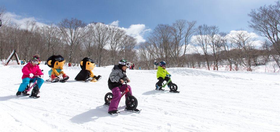 関東地区・首都圏から日帰りで楽しめるお勧めスキー場