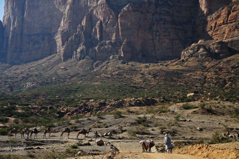 荒涼とした大地と特徴ある岩山からなるティグレ州の景観