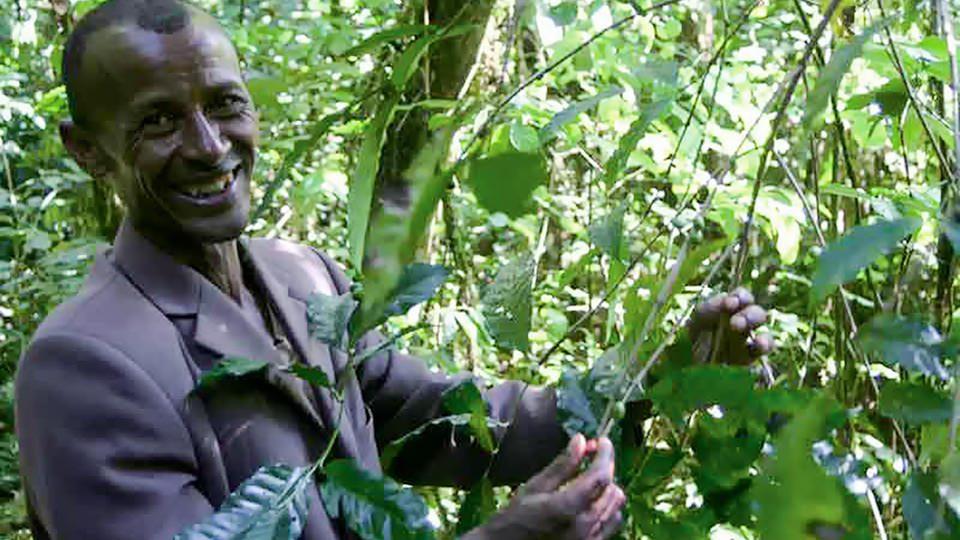 エチオピアの美味しいコーヒーの物語を自分の目で見て、体験しにいきませんか?