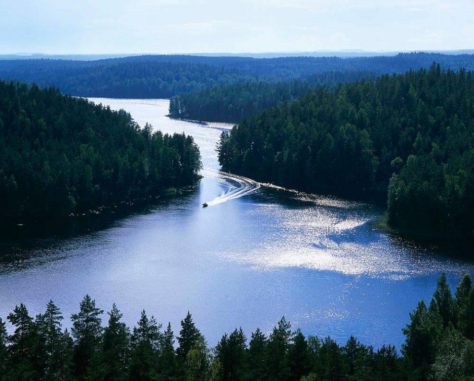 フィンランドの森『ヌークシオ国立公園』にて夏限定♪日本語ガイド付きツアー催行開始