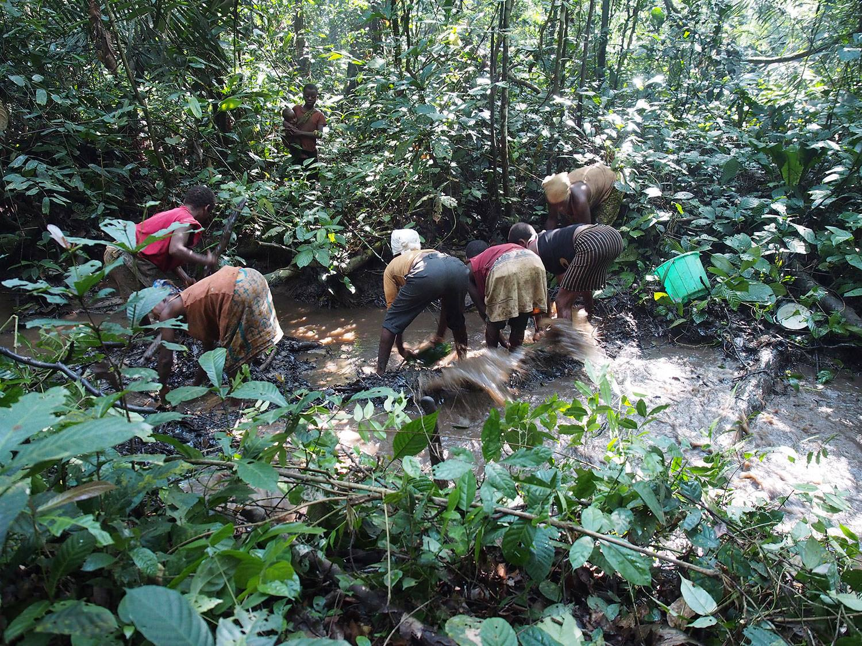 カメルーン発バカ・ピグミーの狩猟採集生活が体験できる!