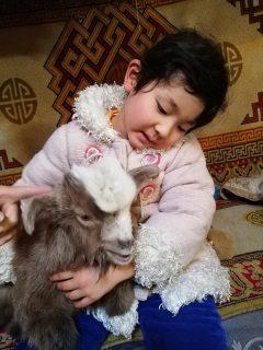 子連れモンゴル冬の旅